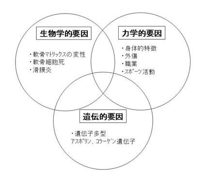 図3.OAの発症に関与する3大要因
