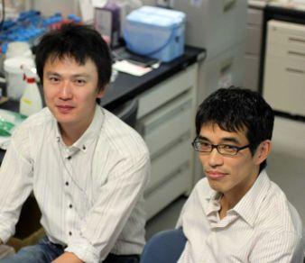左:東門田 誠一(特任助教)、右:堀内 圭輔(特任講師)