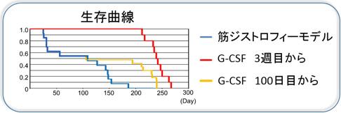 図4. モデルマウスにおける生存曲線(縦軸:生存率。横軸:産まれてからの日数)
