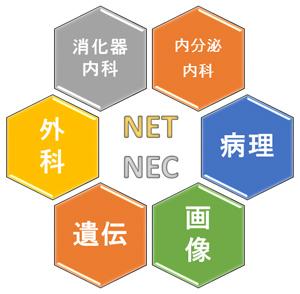 図7. 各領域の専門家の協力とチームワーク