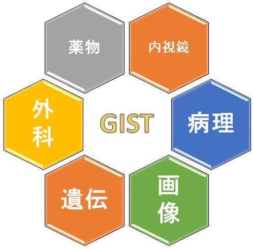 図8.慶應GISTチームの医療体制
