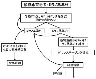 図4.ミラノ基準逸脱肝細胞がんダウンステージの戦略