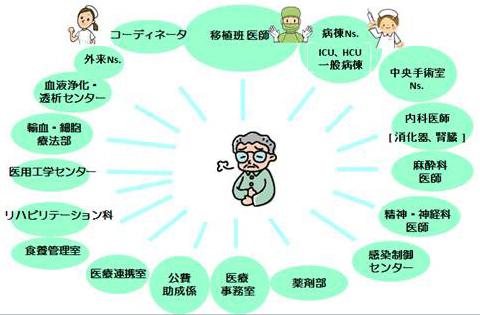 図7.肝移植を成功させる移植スクラム