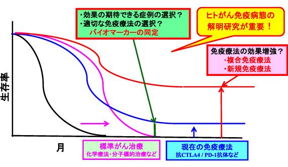 図2. がん免疫療法における重要課題