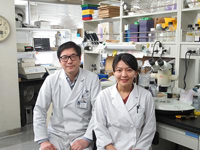左:吉村昭彦(微生物学・免疫学教室教授)、右:伊藤美菜子(同特任助教)