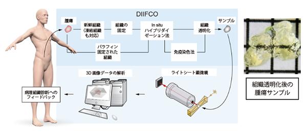 図1. DIFFCO法の概略